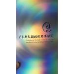 廣東新天麗控股有限公司